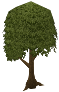 119px-Normaltree
