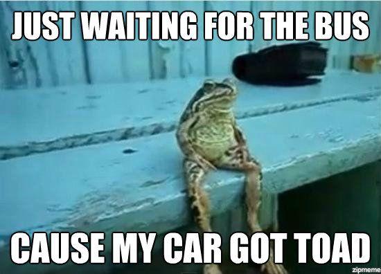 File:Frogpun.jpg