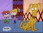 Rugrats - Tooth or Dare 120