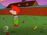 Rugrats - Chuckie's Duckling 97