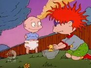 Rugrats - Chuckie's Duckling 129