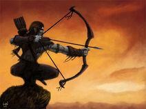 Ascheya-archer