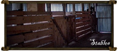 House - The Stables