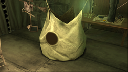 OnionBag