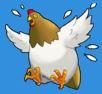 Chicken Flap