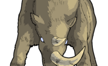 DISTRESSED WOOLLY RHINO