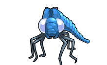TAUNTED DRAGONFLY