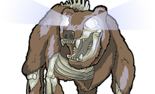 DECAYED BEAR HUSK