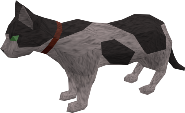File:Pet cat (white and black) pet.png