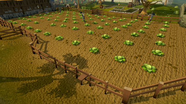File:Falador cabbage patch.png