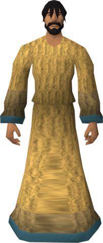 File:Robe of Elidinis equipped.png