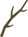 Willow branch detail