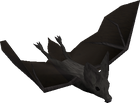 Giant bat old
