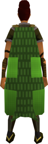 File:Team-33 cape equipped.png