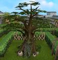 Village spirit tree.png
