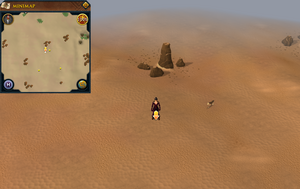 Scan clue Kharidian Desert south-east of fairy ring