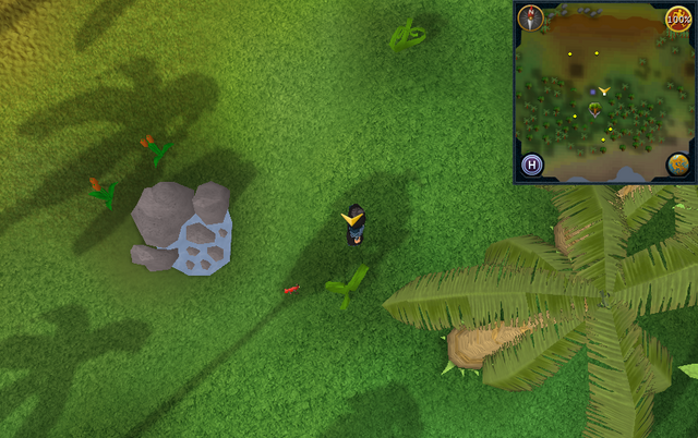 File:Scan clue Kharazi Jungle just east of water pool.png