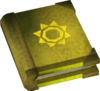 Mages' book (yellow) detail