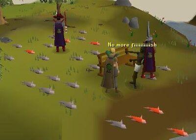 No more fish