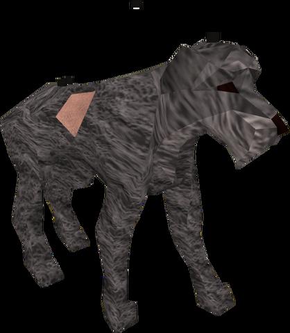 File:Stray dog.png