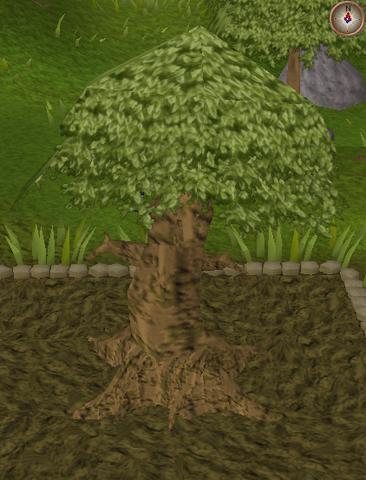 File:Spirit tree10.png