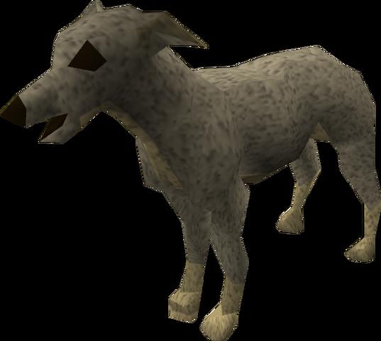 File:Greyhound puppy (grey) pet.png