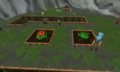 Farming herbs.png