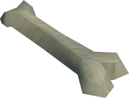 File:Femur bone detail.png