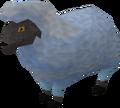 Sick looking sheep 3.png