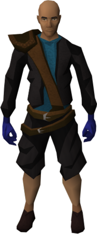 File:Brawling gloves (Agility) equipped.png