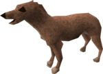 Greyhound puppy (light brown) pet.png