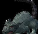Dungeon rat
