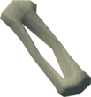 Fibula bone detail.png