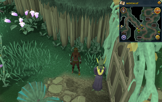 File:Scan clue Zanaris west of gates to market area.png