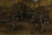 Dead tree entrance