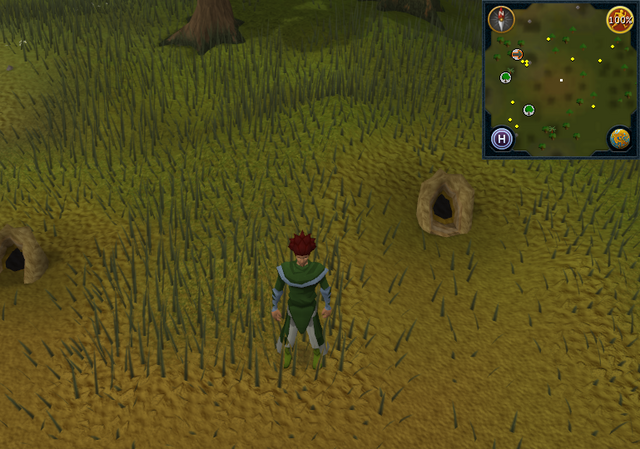 File:Compass clue Piscatoris south-east of fairy ring.png