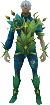 Armour of Seasons equipped