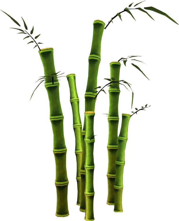 bamboo trees png - photo #15