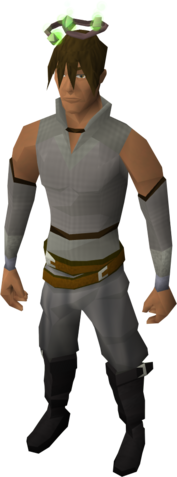 File:Guthix halo equipped.png