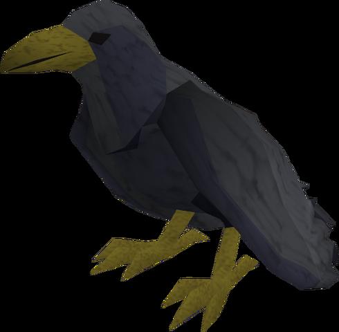 File:Raven (black) pet.png