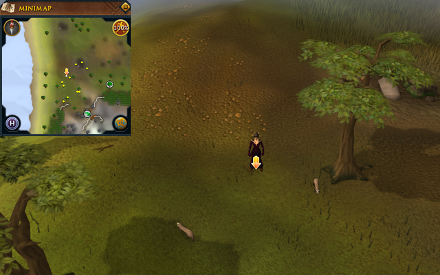 File:Scan clue Piscatoris Hunter area north-west of Eagles' Peak.png