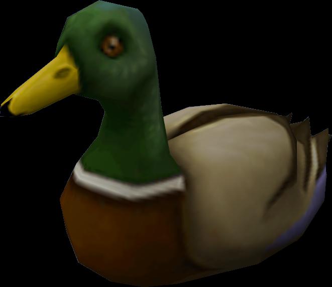 Soubor:Duck.png