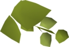 Hammerstone hops detail