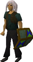 File:Adamant shield (h4) equipped old.png