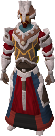 File:Battle-mage armour equipped.png