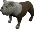 Bulldog (white) pet.png