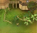 Treasure Trails/Guide/Emotes