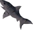 Raw tiger shark detail