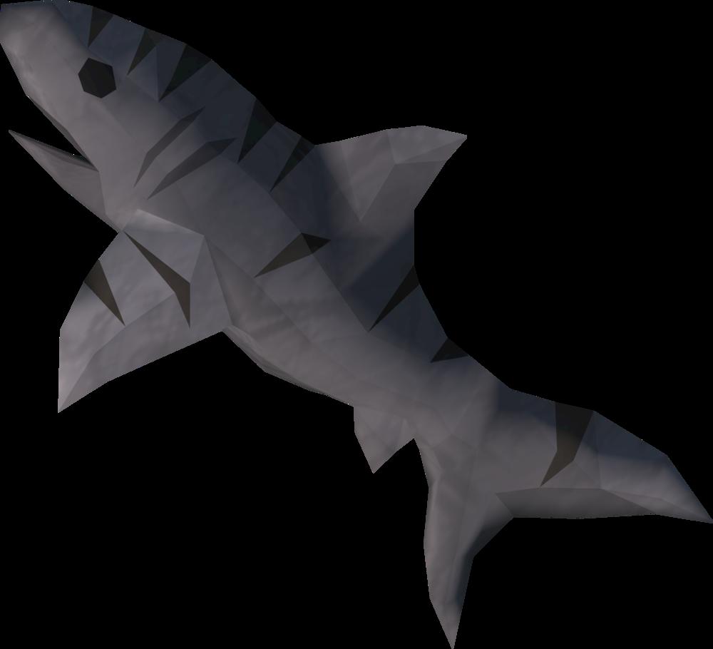 File:Raw tiger shark detail.png