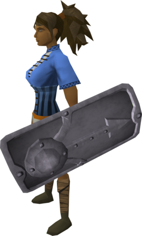 File:Steel sq shield equipped.png